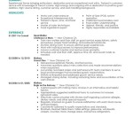server resume 2016 server food and restaurant experienced server bringing enthuasm trained waitress - Resume Examples For Servers