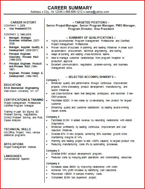 Career Summary Example. Resume Career Summary Examples - Resume