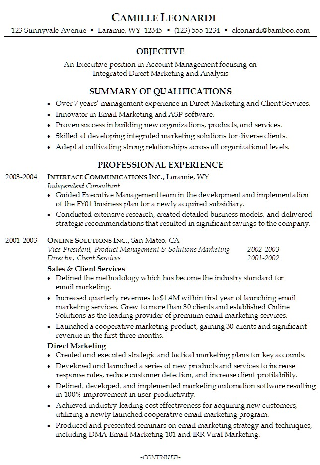 resume summary example objective professional experience samples