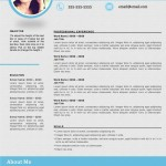 Best Resume Formats 2016 for best engineering resume format