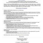 Best professional resume summary of qualifications Resume Summary Sample