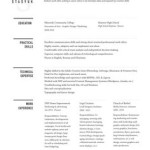 Great Examples Of Creative CV Resume Design skills for web design resume