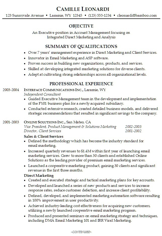 Resume Summary Samples For It Professionals