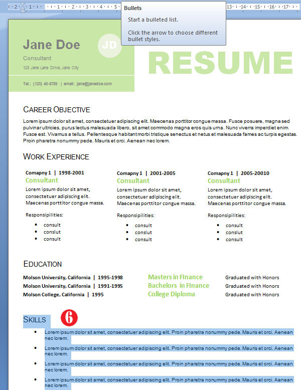 Professional Resume Design design skills for resume by jane doe