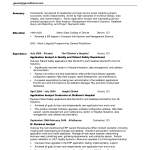 Professional Resume Summary Examples Powerful Summary of Qualifications Examples with experience