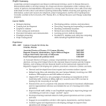 Professional Resume Summary Examples Resume Professional Summary Sample