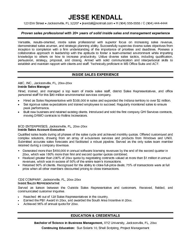 sle project manager resume exle sales resume