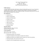 Sample Resume Sales Associate Retail Store Sales Associate Resume Example