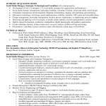 Sample Resume Summary Of Qualifications technical skills professional experience