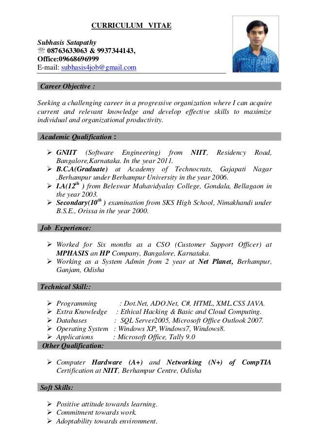 Best Resume Curriculum Vitae Best Resume Examples