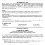 business analyst resume examples business analyst resume examples business analyst resume indeed by cassie