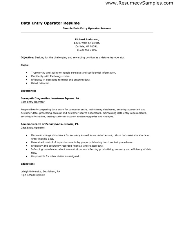 sample resume data entry