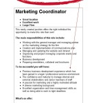 marketing resume objective examples resume objective examples