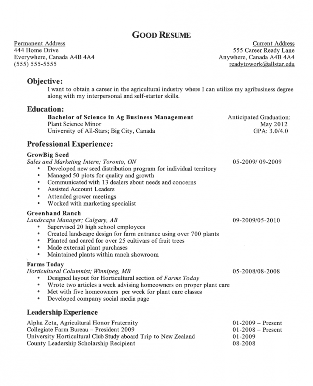 sample resume objective