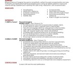 Personal Care Personal Care And Services Personal Care Resume - Care assistant responsibilities