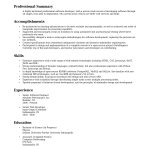 professional summary examples Example Of Professional Summary On Resume paul sadauskas