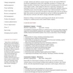 project manager cv example project manager resume summary by richard hill - Sample Project Manager Resume