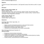 sales associate resume sample sales associate job description example
