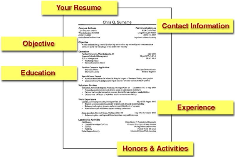 write a professional resume