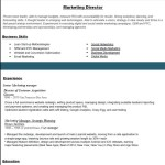 Top Resume Samples resume formats 2016 marketing director