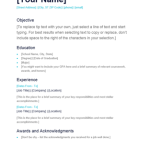 blank basic resume objective examples to replace your name