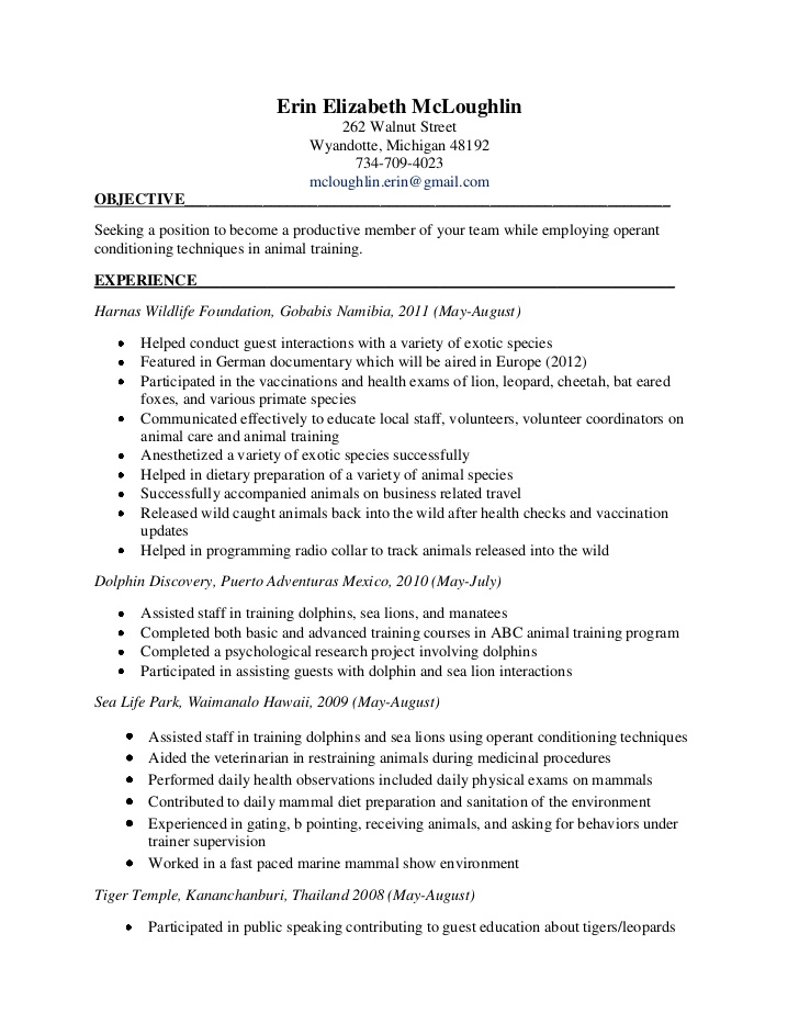 Diet Tech | Resume Cv Cover Letter