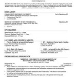 Example Nursing Resumes Experienced nursing resume