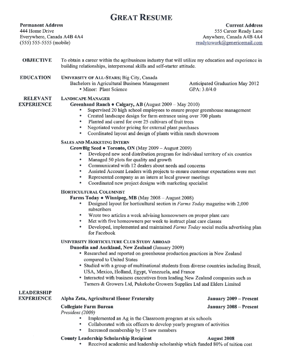 my perfect great resume example com examples of a good resume great 10 great resume objective and relevant experience