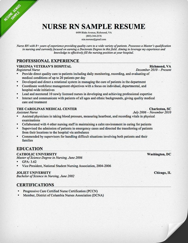 Professional Resume for Nurses RN Resume Professional