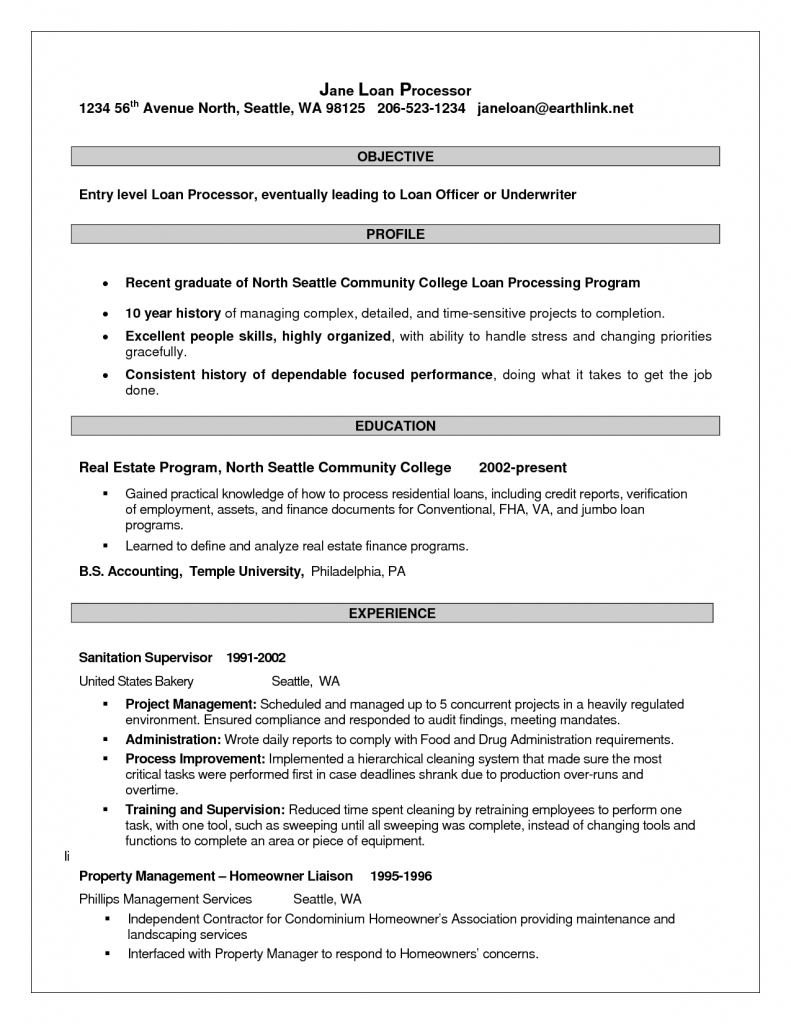 sle of loan processor resume for application