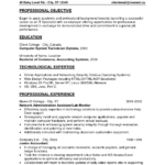 entry level resume professional objective and professional experience