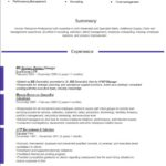 new resume format 2016 HR manager violet summary experience