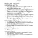 Insurance Agent Resume Example professional experience