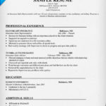Insurance Agent Resume Sample insurance sales representative resume sample