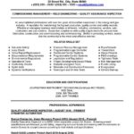 Insurance Clerk Resume Insurance Clerk Resume Template Resumebucket Assurance Inspector Resume Template Quality Control Manager Resume