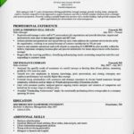 Insurance Sales Resume Sample 2015 professional experience