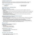 Looking for a Great Resume Objective Resume Template