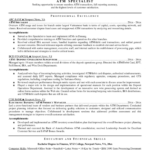 Manager Resume Sample Auto Financial Analyst Resume