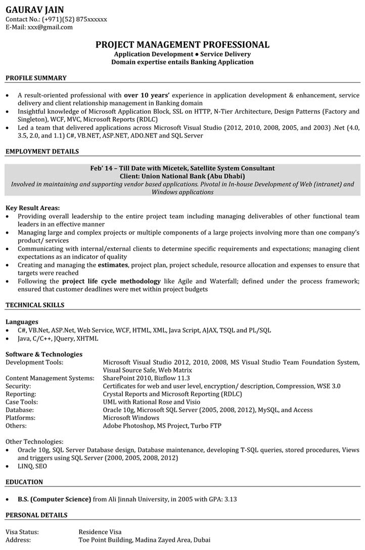 Profile Summary Resume Examples - Template