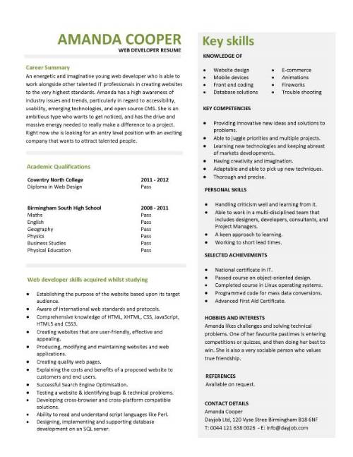 Entry level web developer resume template career summary