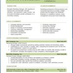 Example of Professional Resume Template with Marketing Manager Professional Experience