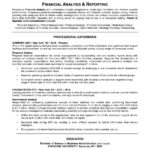 Good Resume financial analysis and reporting professional experience