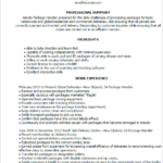 Resume Templates Package Handler professional summary