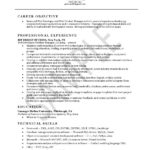 Web Developer Resume Example career objective professional experience