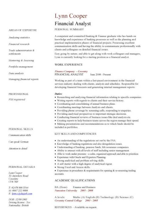 financial analyst cv work experience key skills and