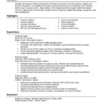 financial analyst resume summary highlights