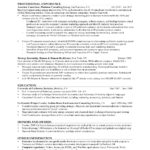 good resume examples professional experience