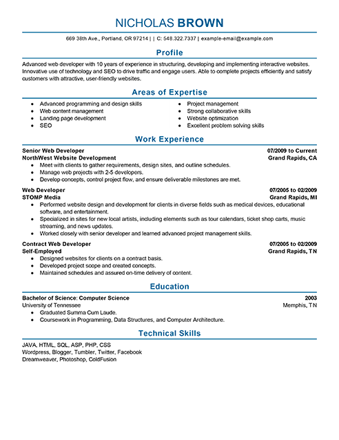 professional Web Developer Resume profile work experience