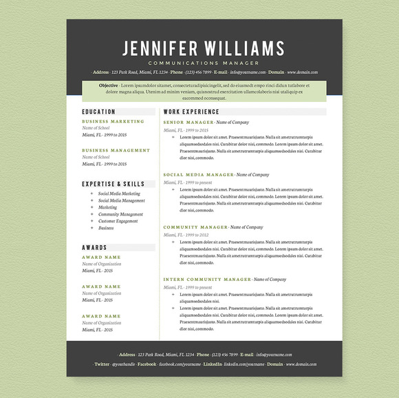professional resume template work experience