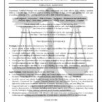 paralegal resume example professional experience